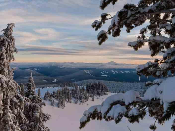 Timberline Overlook
