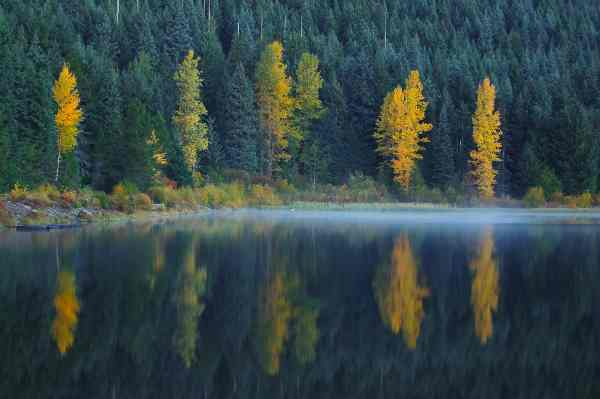 Trillium Lake in the Fall