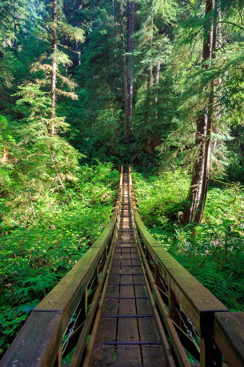 Cape Creek Footbridge