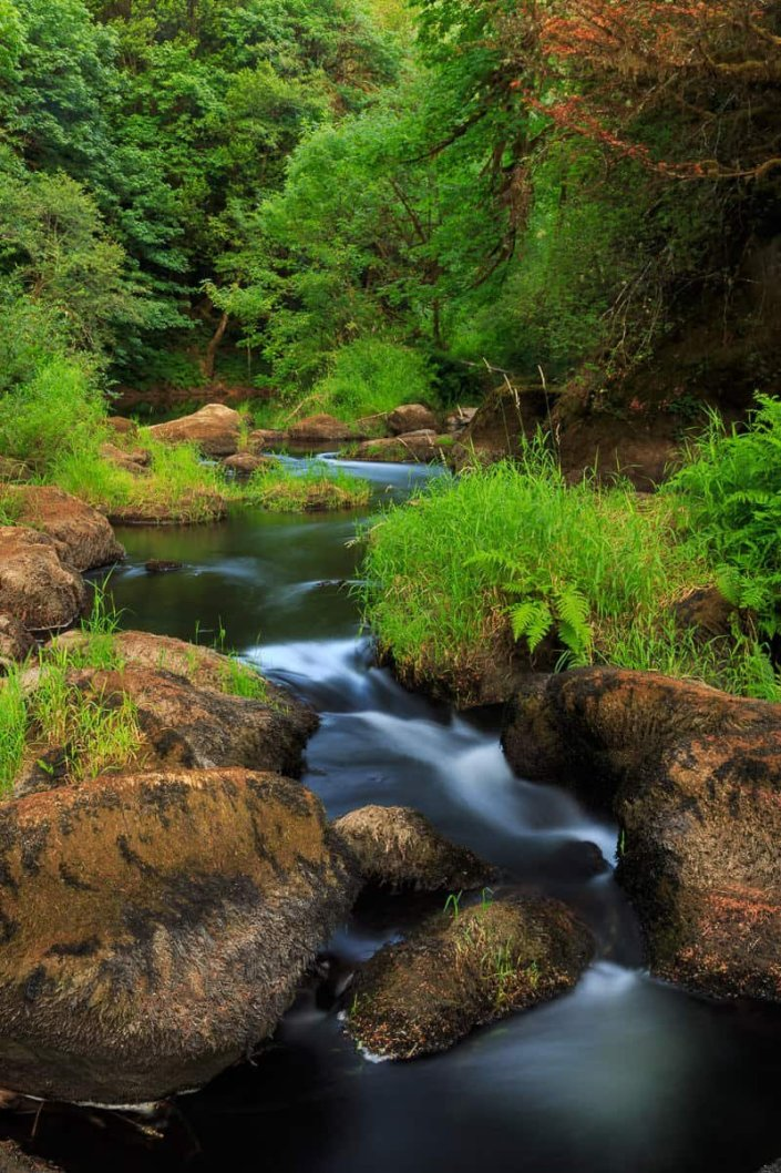Loon Lake and Mill Creek