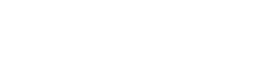 dshseals white logo