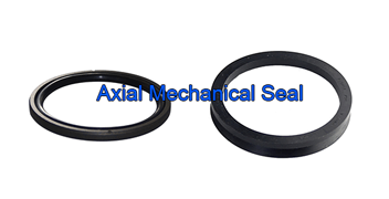 Axial Mechanical Seal