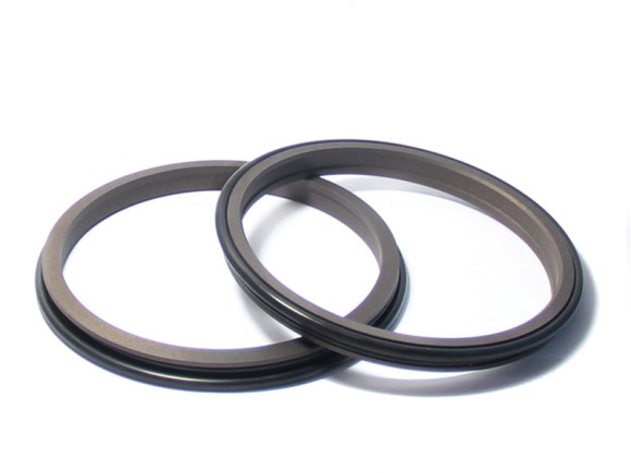 DPR-Cylinder Wiper Ring Dustproof Scraper Seal-detail-01