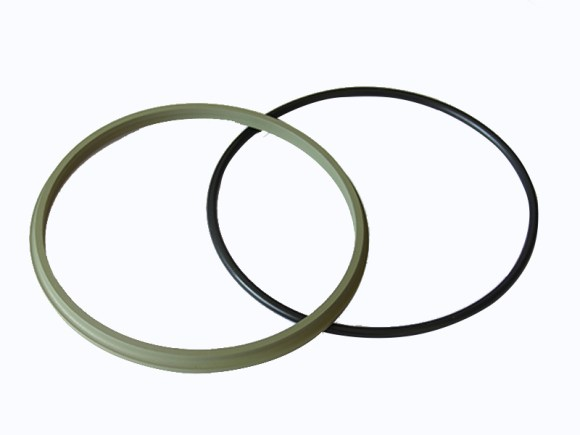 DSZL - Hydraulic PTFE Dust Wiper Seals-detail-05
