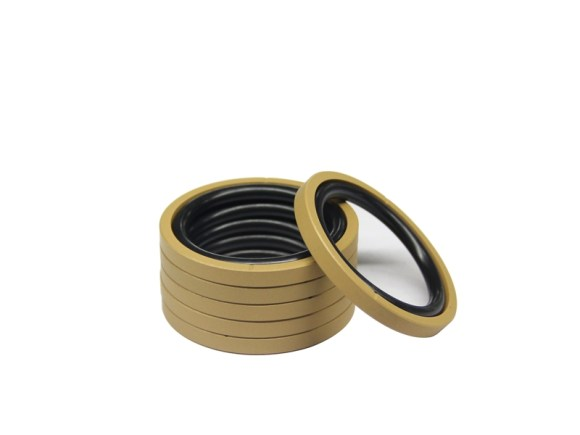 DSH-Piston Seal Design | Piston Seal Bronze Filled PTFE Glyd Ring-11
