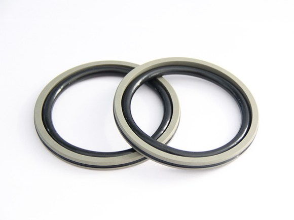 DSH-Professional Piston Seal Piston Ring Supplier-1