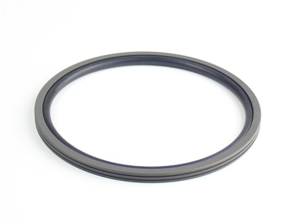 DSH-Find Shaft Oil Seal High Pressure Rotary Seal From Dsh Seals-2