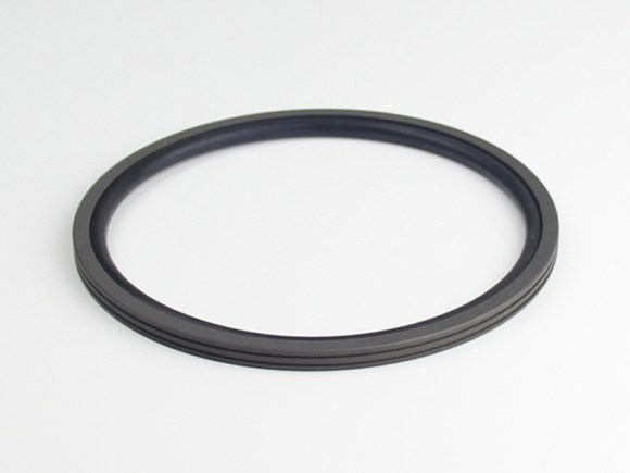 DSH-Find Shaft Oil Seal High Pressure Rotary Seal From Dsh Seals-7