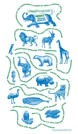 Engraved-Endangered-Animals