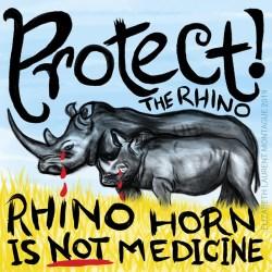 Protect the Rhino