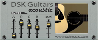 DSK Guitars Acoustic