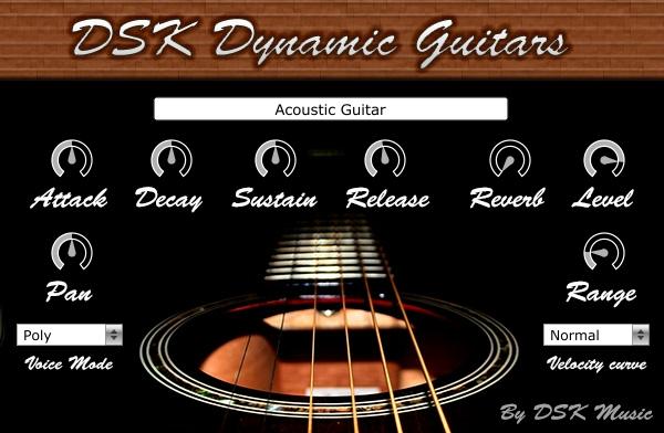 「DSK Music Dynamic Guitars」の画像検索結果