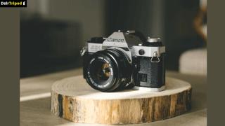 Best Cameras for Instagram Photos