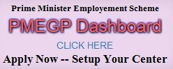 pmegp online apply