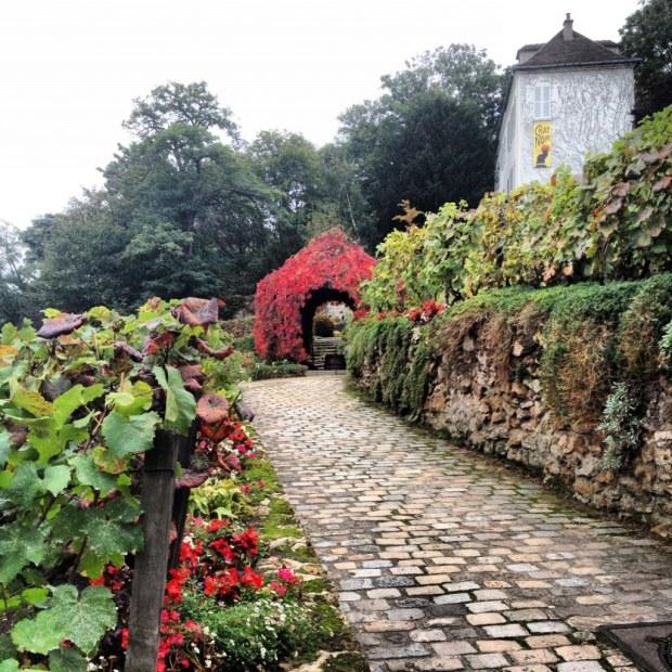 Le vignoble de Montmartre