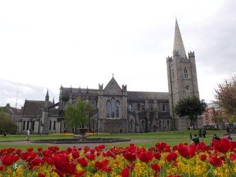 #22 St Patrick's Church