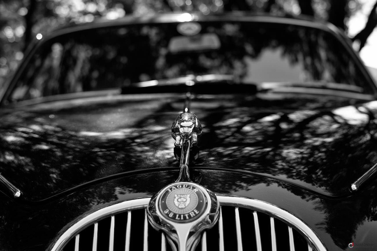 Jaguar 3.8 Litres