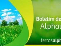 Alphaville: vendas de seu segundo projeto em Conquista