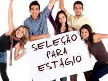CIEE tem 260 vagas de estágio área em educação