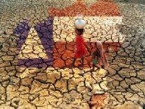 Governo intensifica ações: minimizar efeitos da seca no Estado