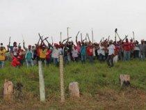 Abril Vermelho: MST ocupa 22 fazendas na Bahia