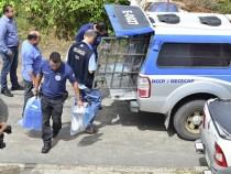 Sonegação fiscal: sete pessoas presas
