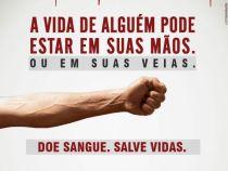 OMS celebra Dia Mundial do Doador de Sangue