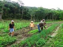 Regularização fundiária de agricultores
