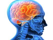 Ministério da Saúde investe R$ 36,4 milhões na saúde mental de 20 estados