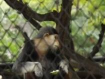 Justiça ordena que Itapetinga regularize Parque da Matinha