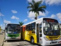 Domingo 02: aumenta número de ônibus circulando