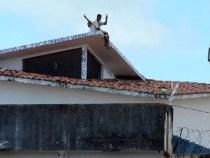 Brasil terá que reduzir população carcerária em 10% até 2019