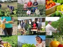 IFBA abre edital para a Chamada Pública de Compra da Agricultura Familiar