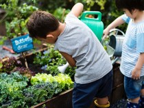 Pesquisa da Uesb propõe implantação de hortas escolares na Educação Básica