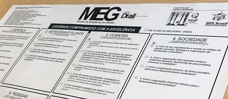 Gestão pelo Detalhe - MEG