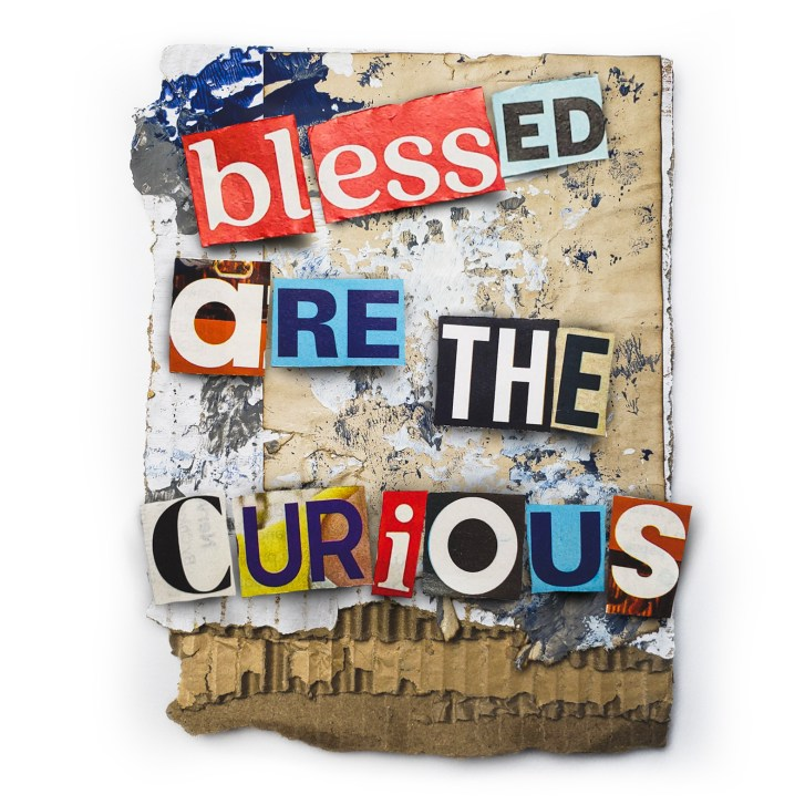 blessed are the curious - original art by duane toops