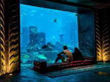 Lost Chambers Aquarium Im Atlantis Palm Dubai Hotel