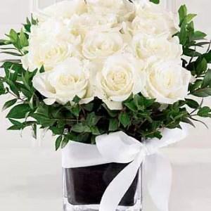 15 White Roses Short Vase