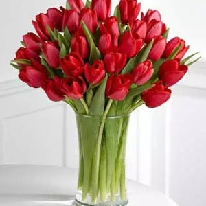 30 red tulips dubai delivery
