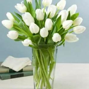 20 white tulips in vase to deliver in Dubai