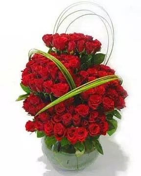 100 roses valentine