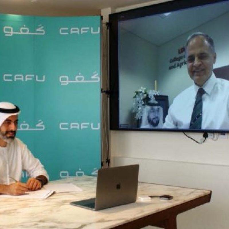 شركة كَفو الناشئة في دبي تضع الأبحاث في صميم تعهّدها للاستدامة