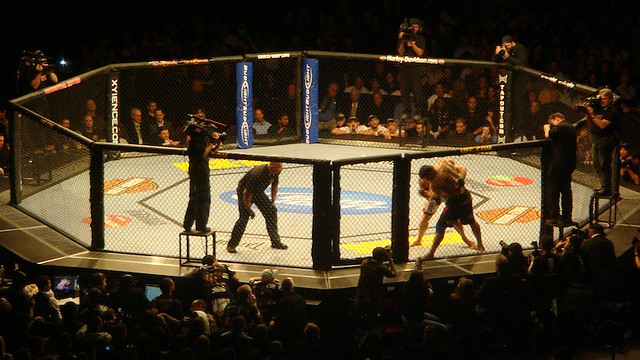 UFC Octagon Flickr