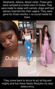 Dubai Porta Potty Celebrities And Human Portable Toilet Rentals Stories