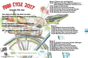 Poster promoting Dublin Food Cycle 2017