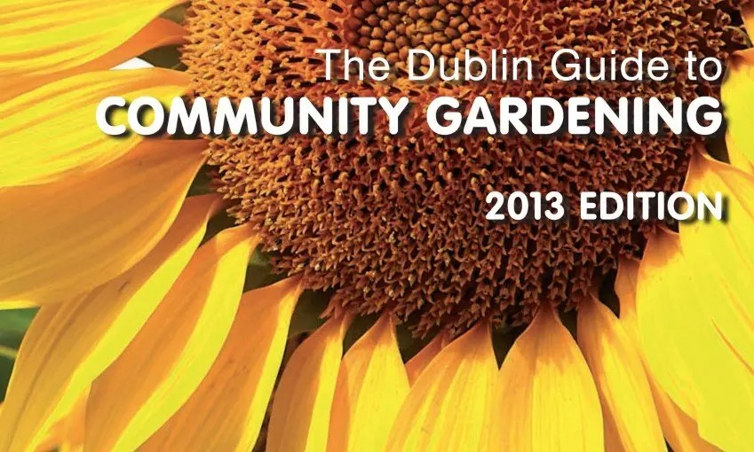 Dublin Guide to Community Garden 2013 front cover picture (sunflower)