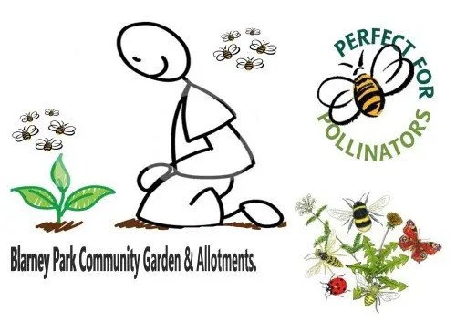 Blarney Park Community Garden and Allotments logo