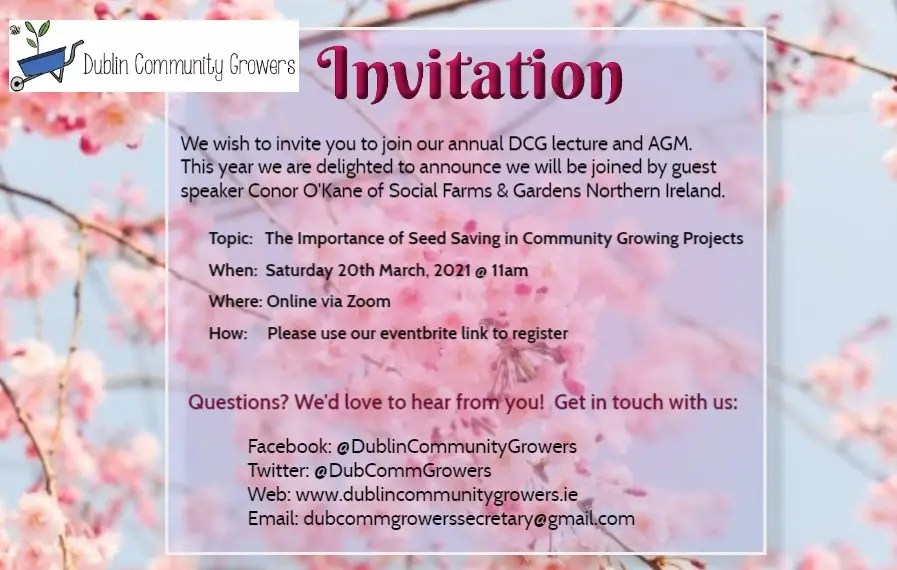 DCG_Annual-Lecture-and-AGM_2021_EB
