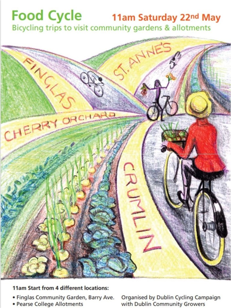Food Cycle Poster