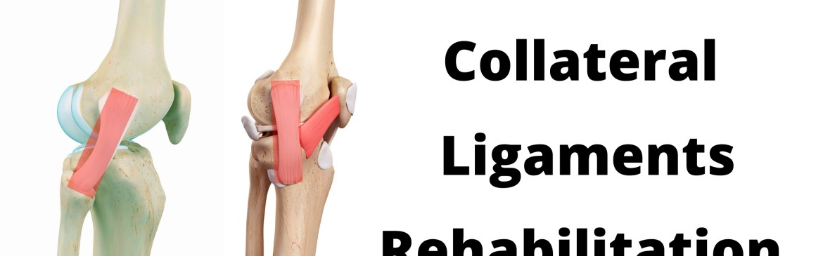 Knee Lateral Collateral Ligament Rehabilitation